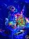 """Японская свето-музыкальная выставка """"Атлантида"""". Ушачский музей Народной Славы имени Владимира Елисеевича Лобанка. г. Ушачи, 2017 г."""