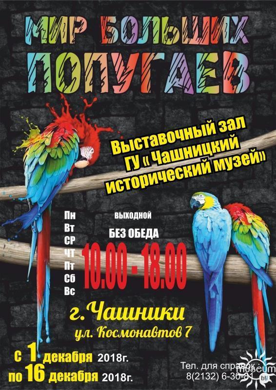Выставка «Мир больших попугаев». Чашникский исторический музей. г. Чашники, 2018 г.